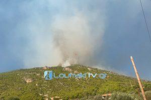 Φωτιά στο Λουτράκι |  Το μέγεθος της καταστροφής σύμφωνα με το Εθνικό Αστεροσκοπείο Αθηνών